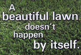 Picture of a lawn and a caption over it